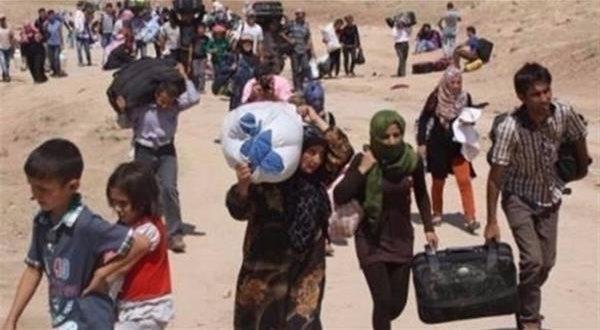 135 ألف نازح من الموصل