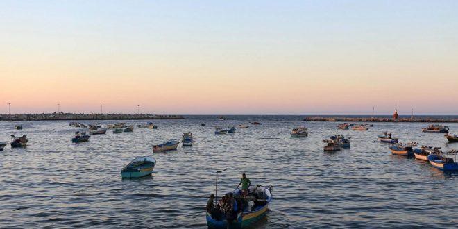 صياد-غزة