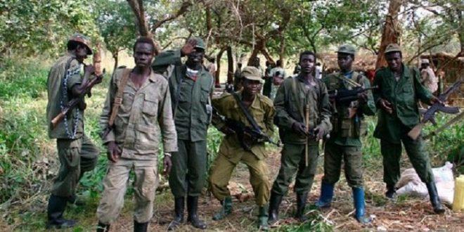 الجماعات الإرهابية-إفريقيا