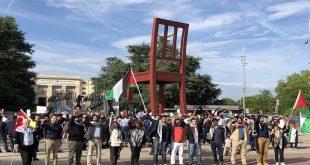جينف-غزة