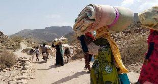 اليمن-نزوح